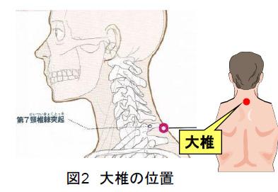 図2 大椎の位置