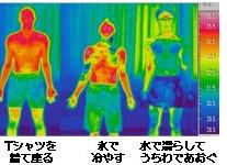 【第12号】夏バテ・熱中症の予防